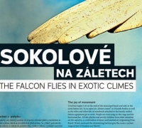THE FALCON FLIES IN EXOTIC CLIMES
